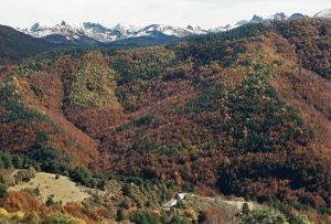 Valle de Salazar, en Navarra. EFE/Jesús Diges/Archivo