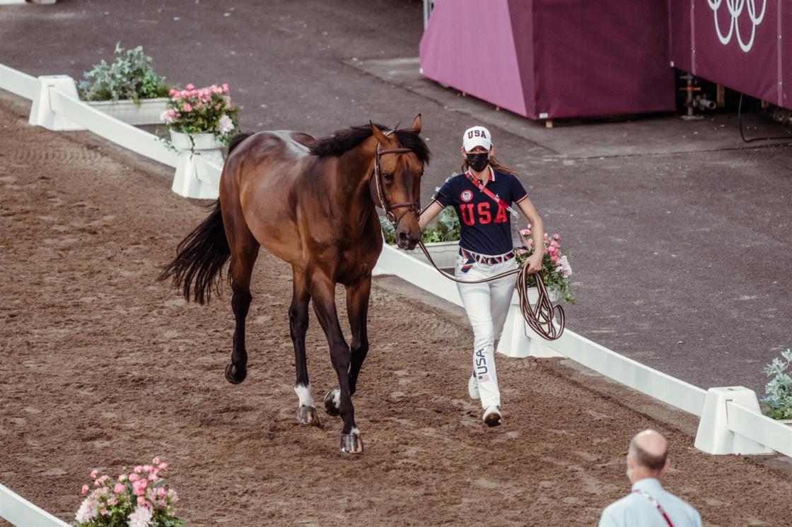 EFE/FEI   2nd horse inspection Jumping   394 - USA - Springsteen Jessica ride Don Juan van de Donkhoeve